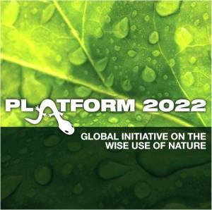 Platform 2022 logo