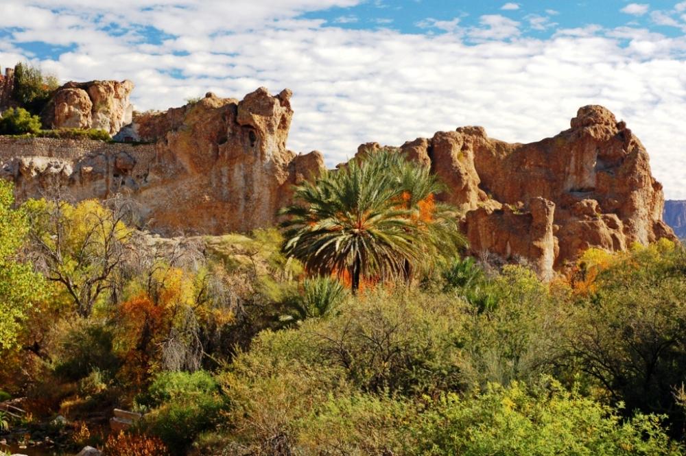 Boyce-Thompson-Arboretum-and-Arnett-Queen-Creeks_GarryWilmore_compressed